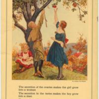 Secretions 1922.jpg