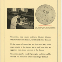 germs of gonorrhea 1919.jpg