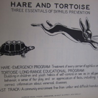 1930 Hare and Tortoise.jpg